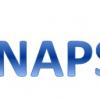 logo-synapses-v2.png