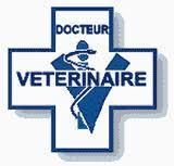 logo-veterinaire.jpg
