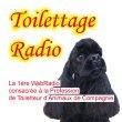 toilettage-radio.jpg